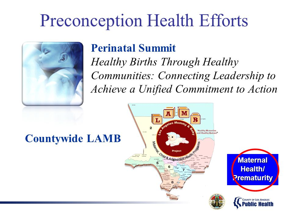 Preconception Health Efforts