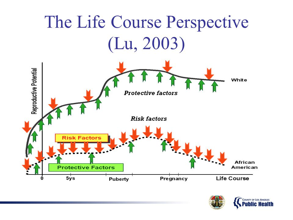 The Life Course Perspective (Lu, 2003)