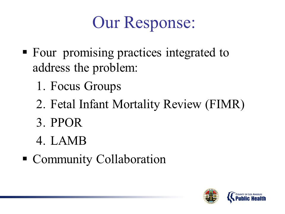 Our Response: Four promising practices integrated to address the problem: Focus Groups. Fetal Infant Mortality Review (FIMR)