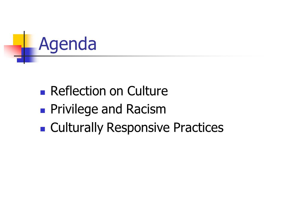 Agenda Reflection on Culture Privilege and Racism