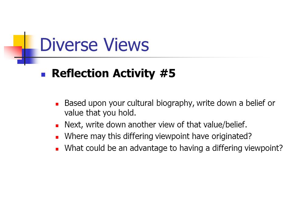 Diverse Views Reflection Activity #5