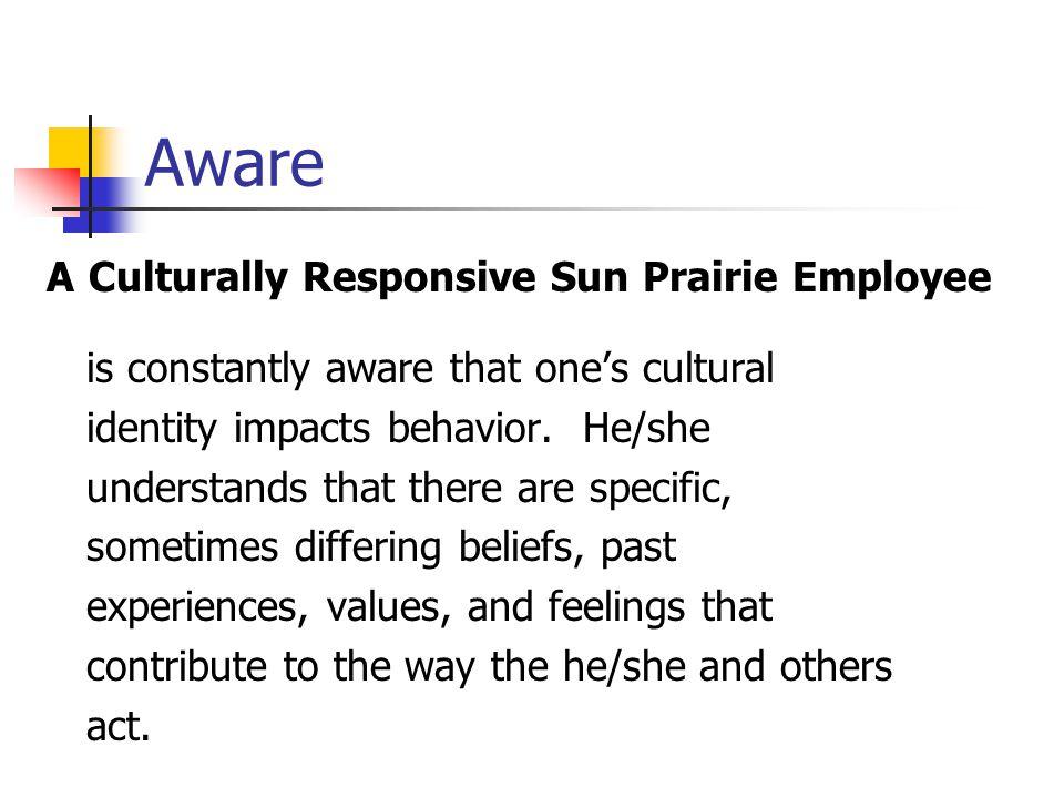 Aware A Culturally Responsive Sun Prairie Employee