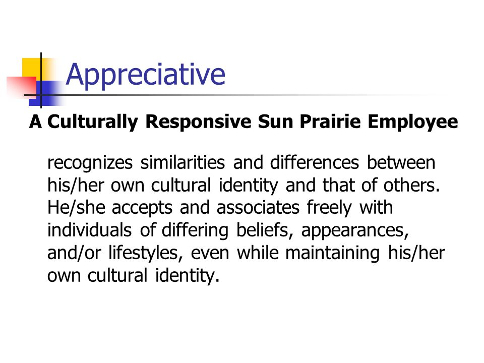 Appreciative A Culturally Responsive Sun Prairie Employee
