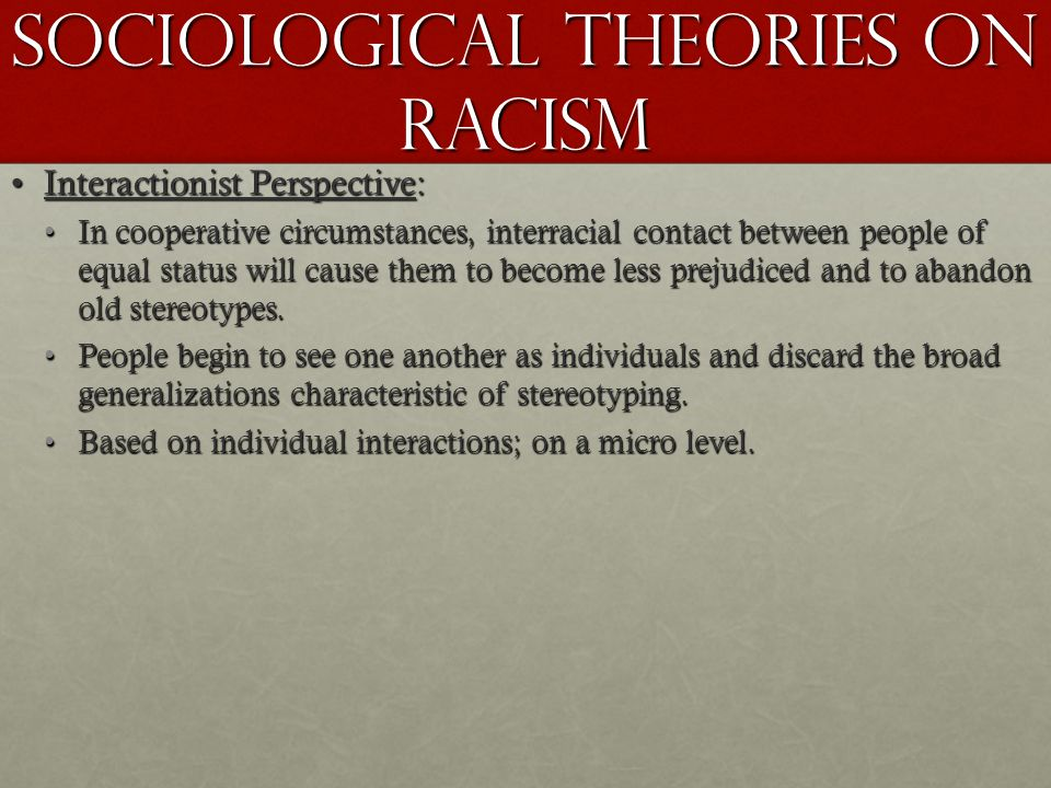 Sociological Theories on Racism
