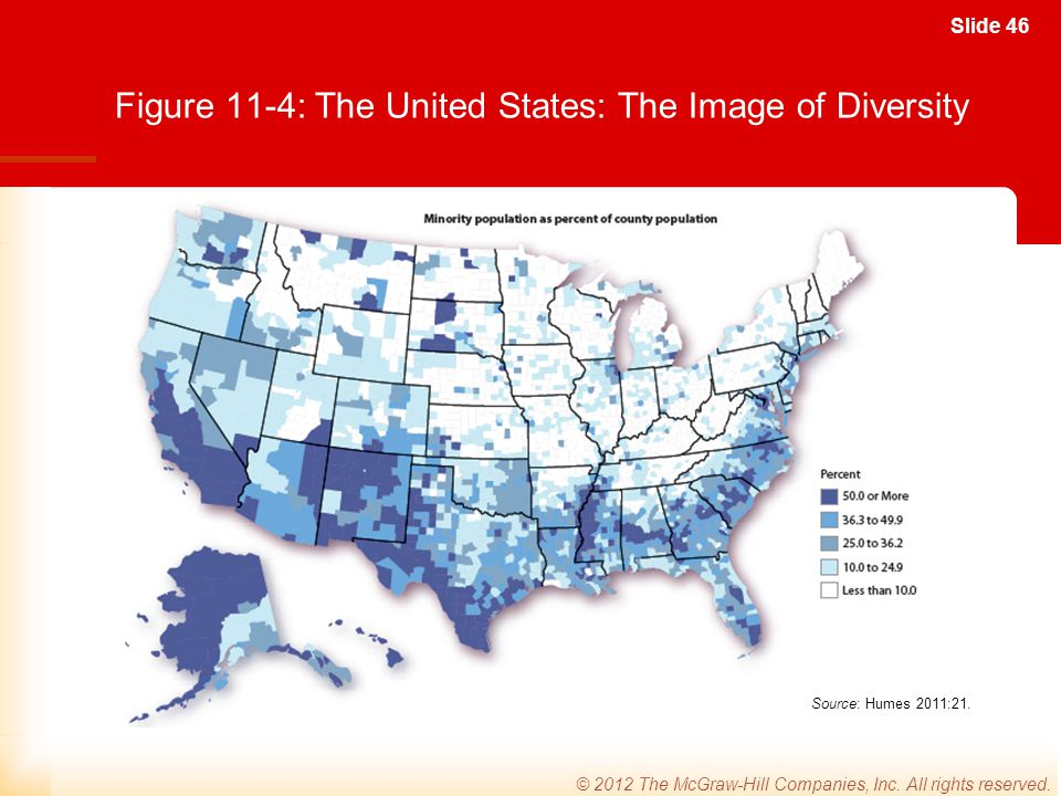 Figure 11-4: The United States: The Image of Diversity