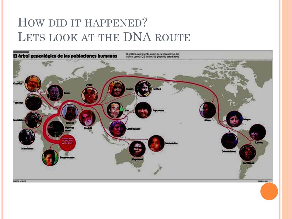 How did it happened Lets look at the DNA route