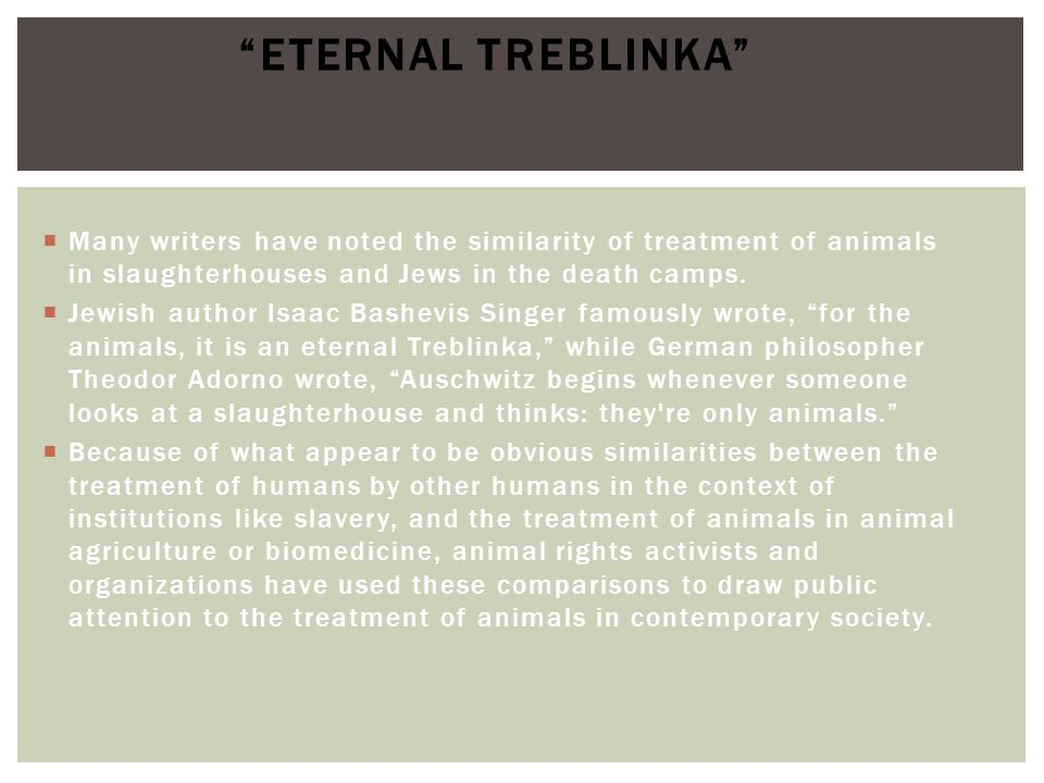 Eternal Treblinka Many writers have noted the similarity of treatment of animals in slaughterhouses and Jews in the death camps.
