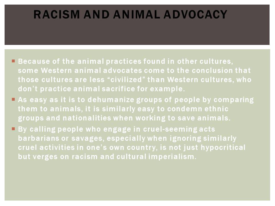 Racism and animal advocacy