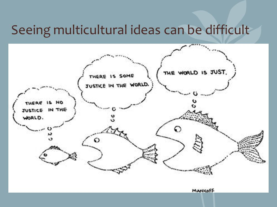 Seeing multicultural ideas can be difficult