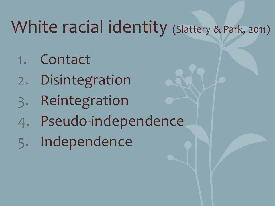White racial identity (Slattery & Park, 2011)