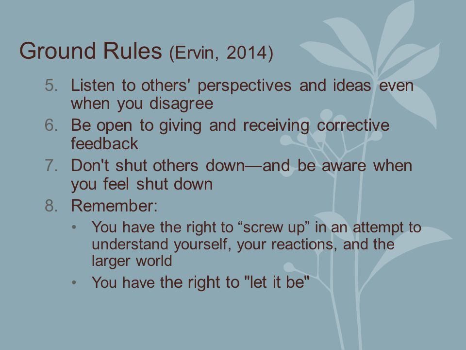 Ground Rules (Ervin, 2014) Listen to others perspectives and ideas even when you disagree. Be open to giving and receiving corrective feedback.
