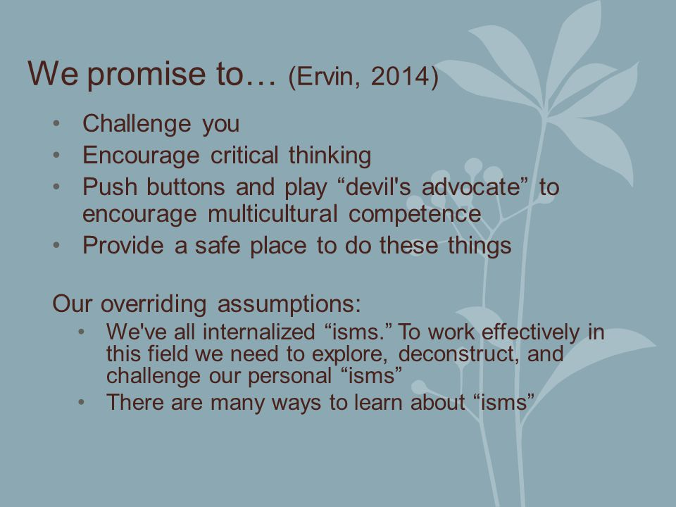 We promise to… (Ervin, 2014) Challenge you Encourage critical thinking