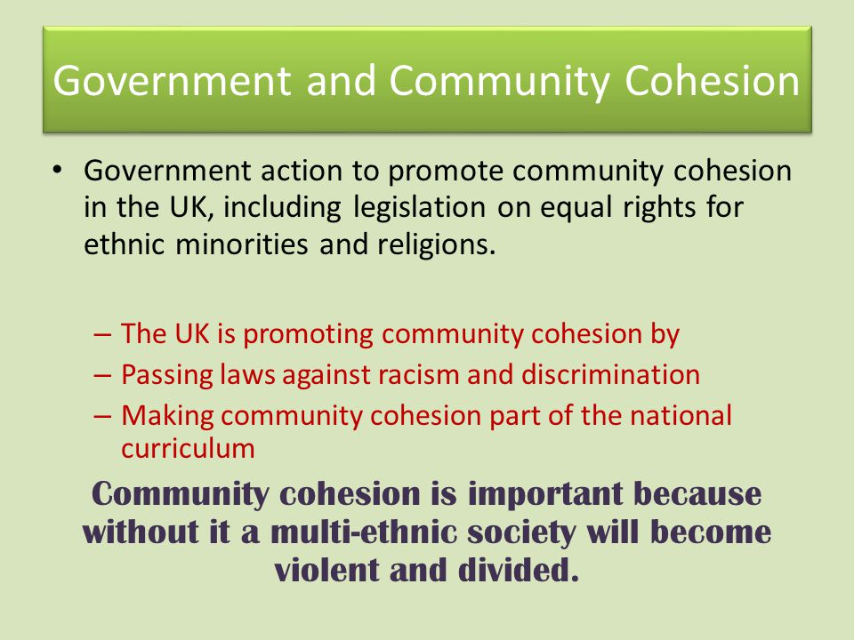 Government and Community Cohesion