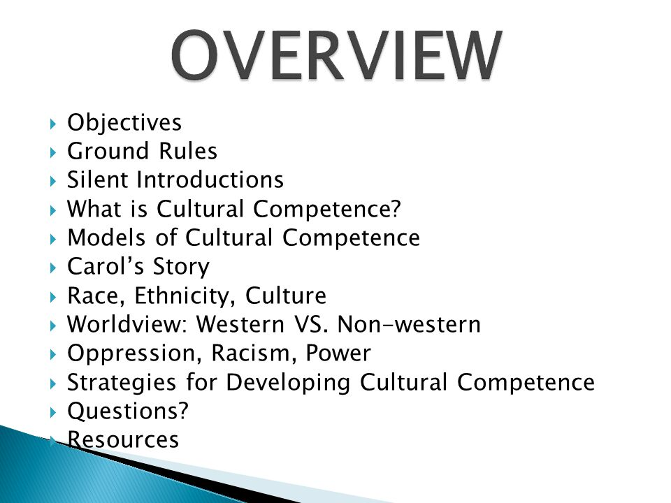 OVERVIEW Objectives Ground Rules Silent Introductions