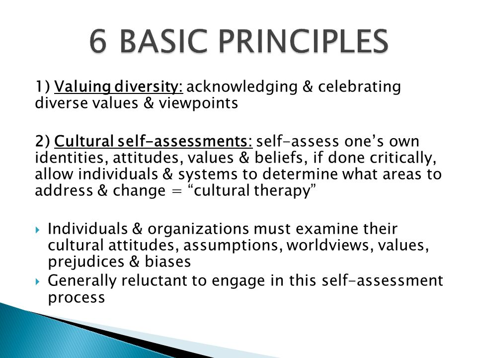 6 BASIC PRINCIPLES 1) Valuing diversity: acknowledging & celebrating diverse values & viewpoints.