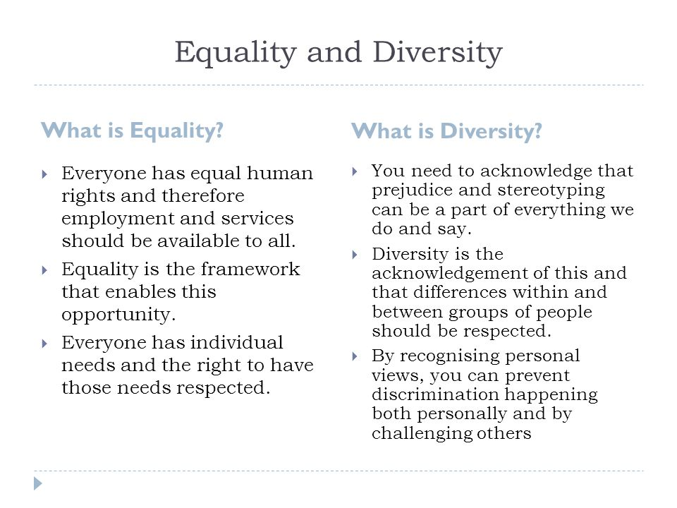 equality and diversity essay