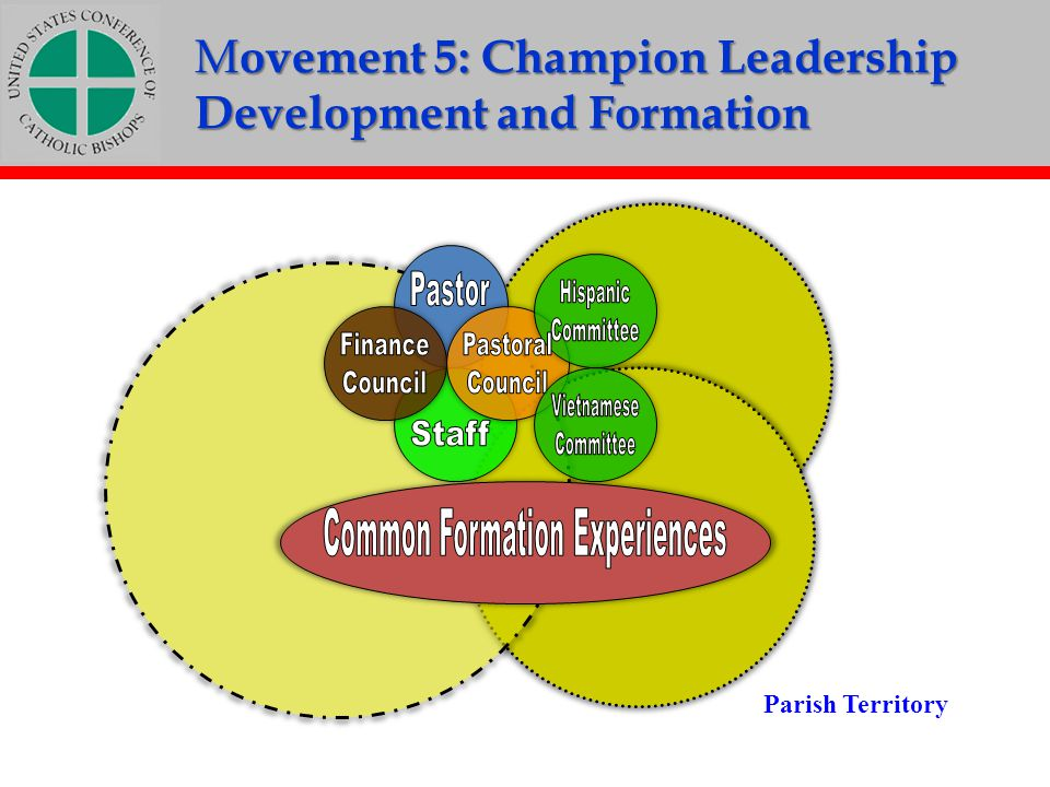 Common Formation Experiences