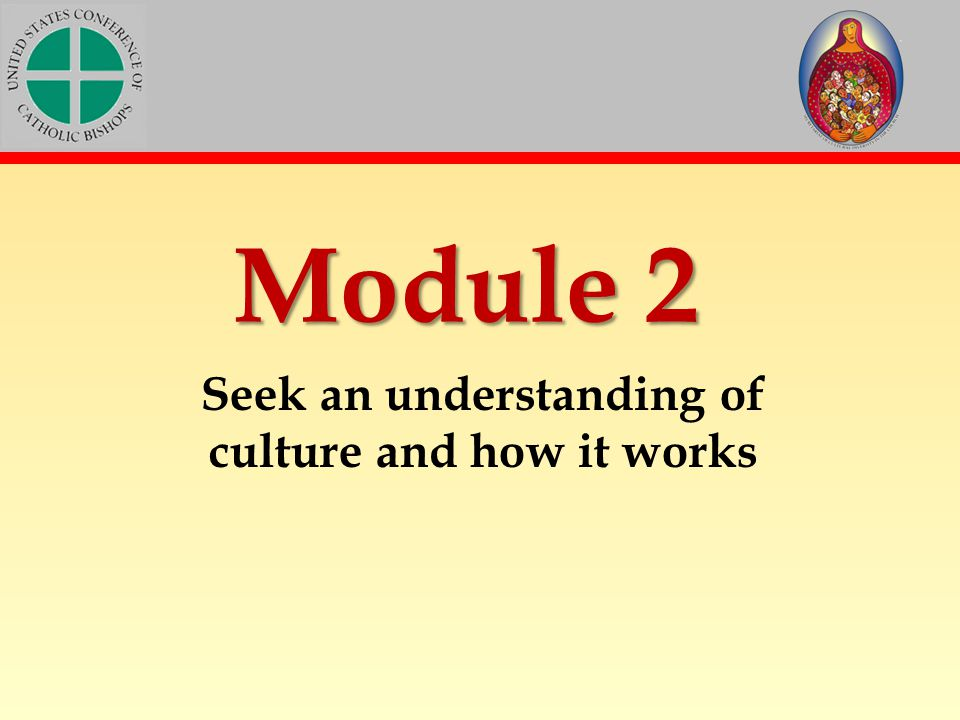 Seek an understanding of culture and how it works