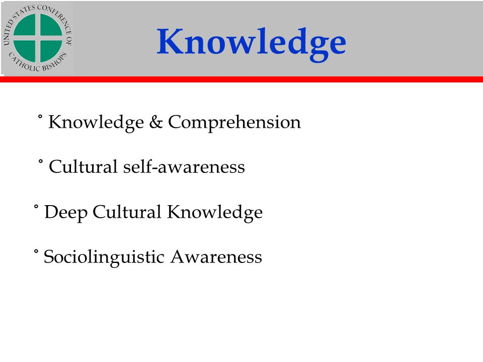 Knowledge ˚ Knowledge & Comprehension ˚ Cultural self-awareness