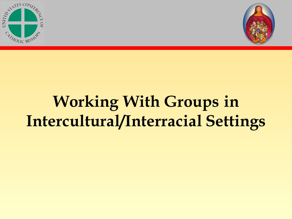 Working With Groups in Intercultural/Interracial Settings