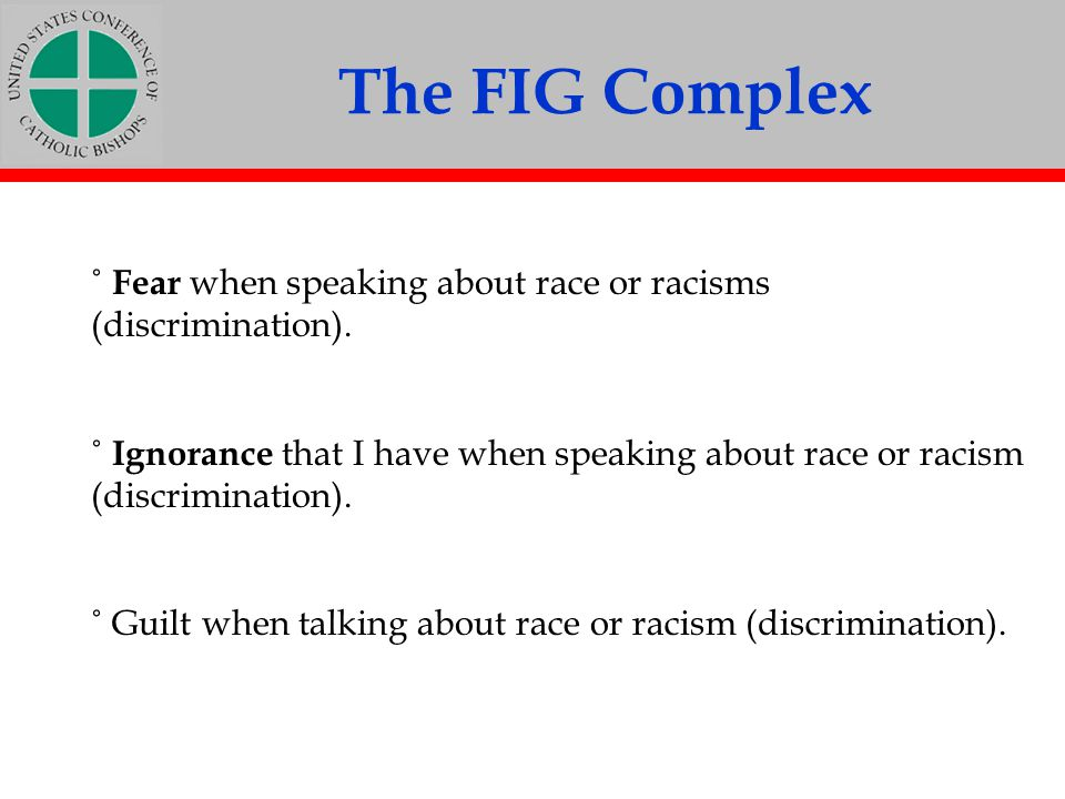 The FIG Complex ˚ Fear when speaking about race or racisms (discrimination).