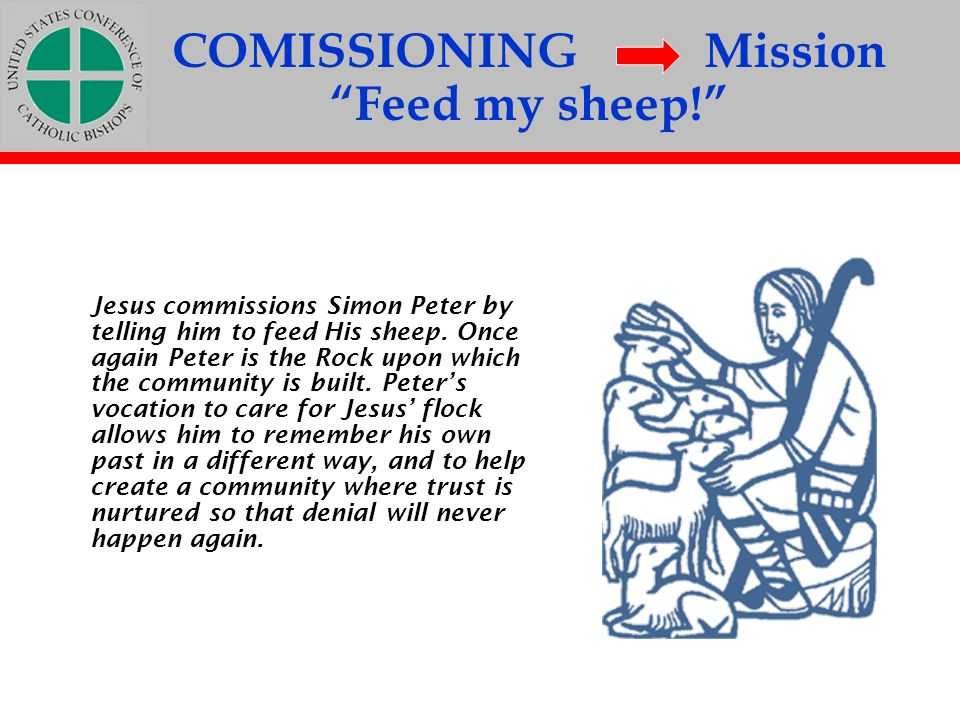 COMISSIONING Mission Feed my sheep!