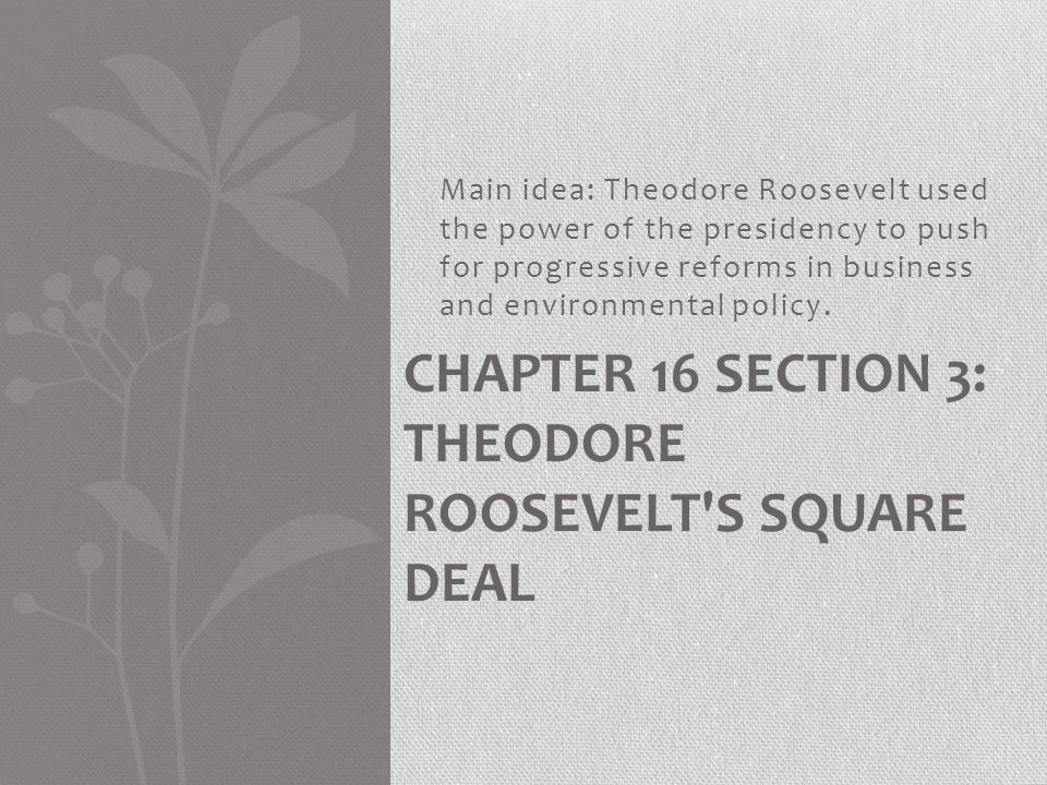Chapter 16 Section 3: Theodore Roosevelt s Square Deal