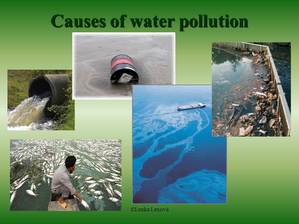 the devestating causes of water pollution Good water quality is the reason why the great barrier reef is one of the most beautiful, diverse and complex ecosystems in the world reefs grow best in waters that have naturally low concentrations of nutrients (nitrogen and phosphorus) and sediments.
