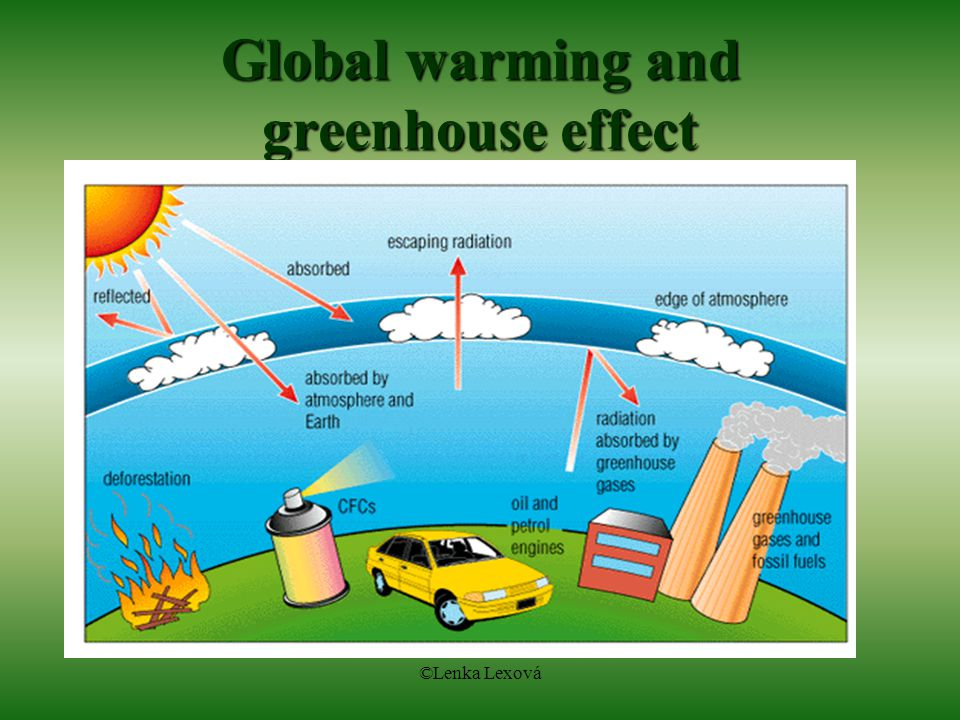 essays on global warming for kids Free essay on global warming available totally free at echeatcom, the largest free essay community.