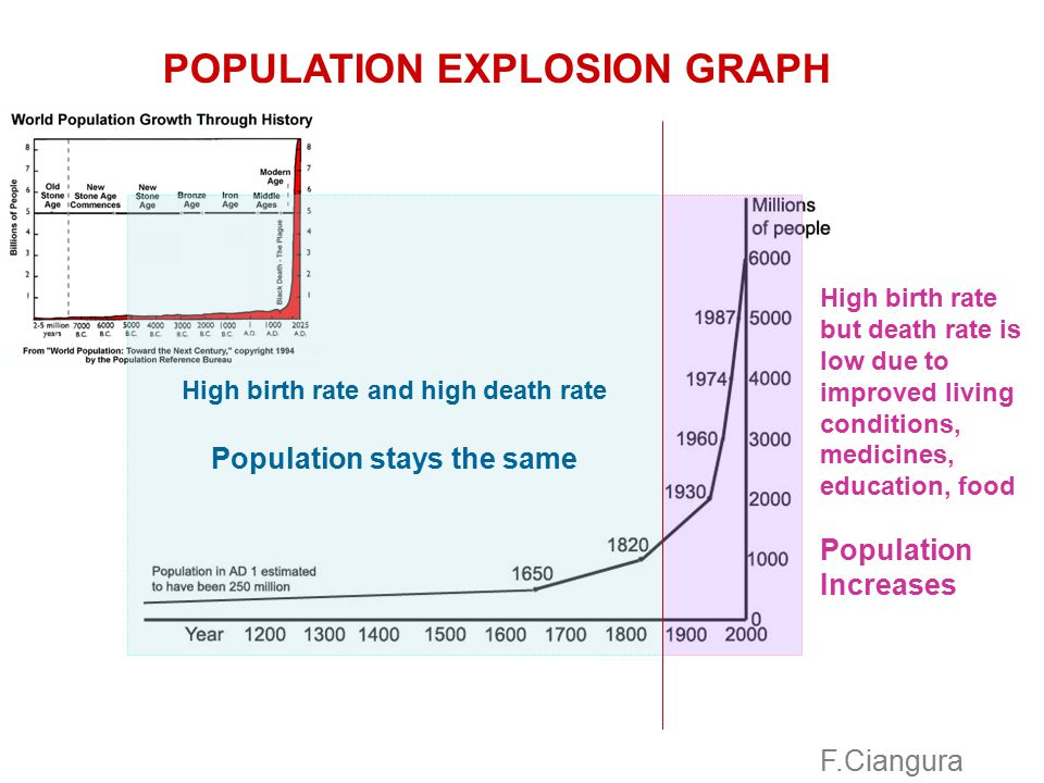 High birth rate and high death rate Population stays the same