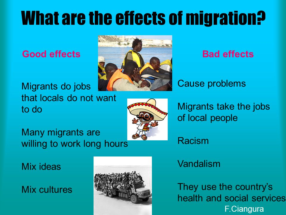 What are the effects of migration