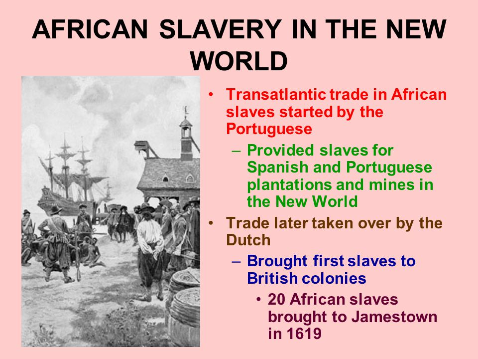 AFRICAN SLAVERY IN THE NEW WORLD