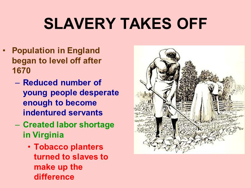 SLAVERY TAKES OFF Population in England began to level off after 1670