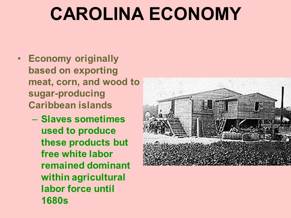 CAROLINA ECONOMY Economy originally based on exporting meat, corn, and wood to sugar-producing Caribbean islands.