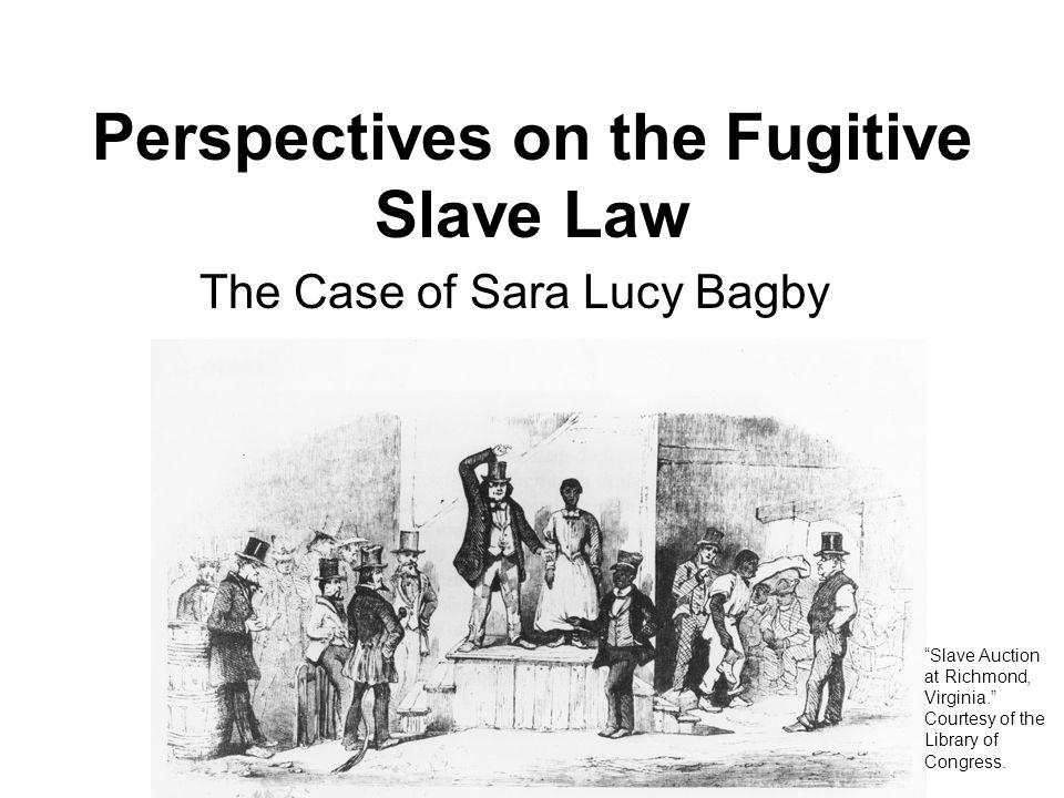Perspectives on the Fugitive Slave Law