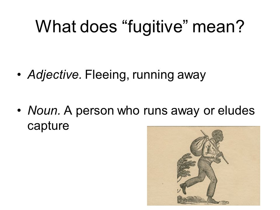 What does fugitive mean
