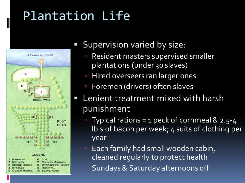 Plantation Life Supervision varied by size: