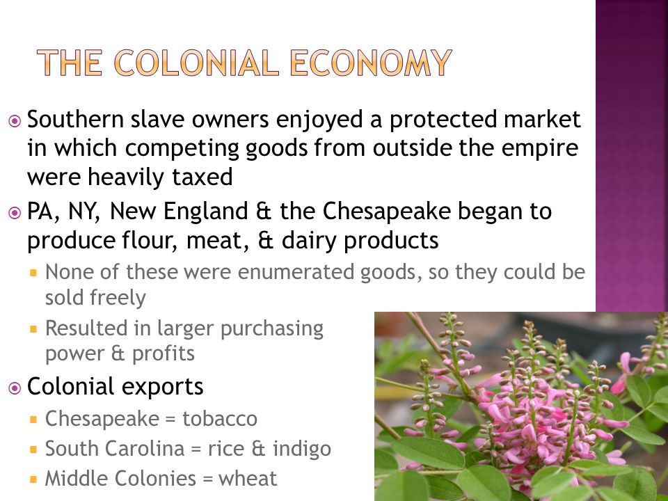 The Colonial Economy Southern slave owners enjoyed a protected market in which competing goods from outside the empire were heavily taxed.