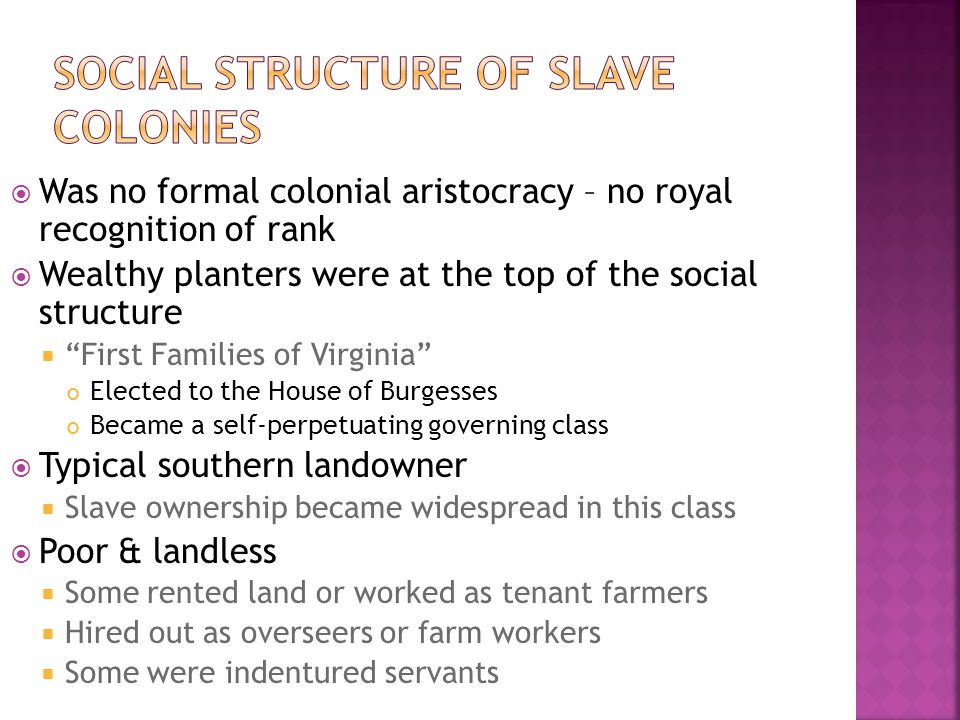 Social Structure of Slave Colonies