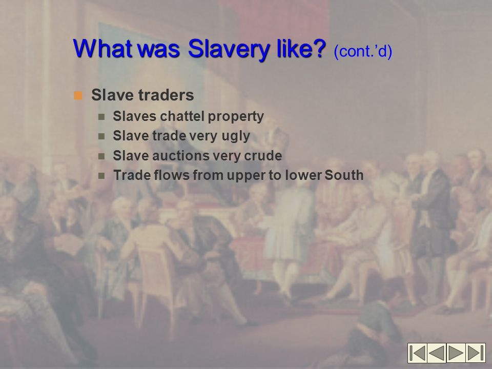 What was Slavery like (cont.'d)