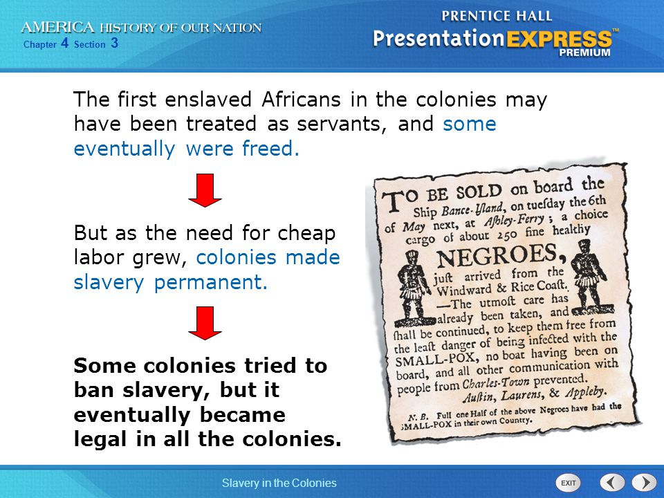 The first enslaved Africans in the colonies may have been treated as servants, and some eventually were freed.