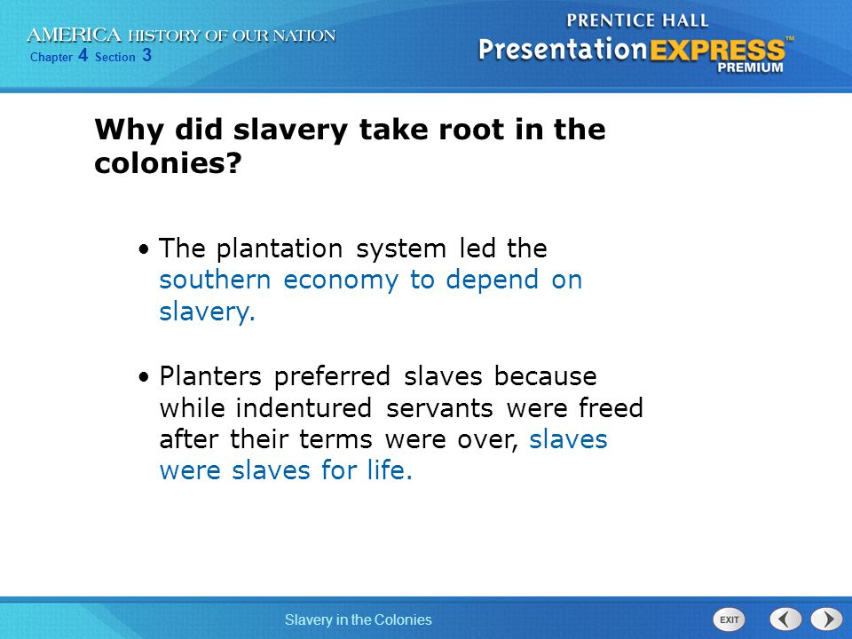 Why did slavery take root in the colonies