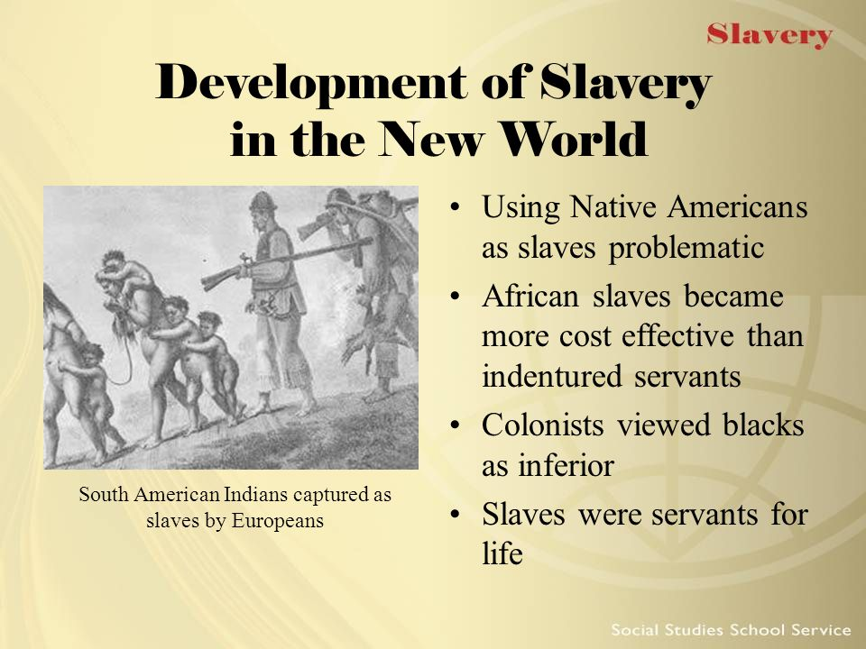 Development of Slavery in the New World