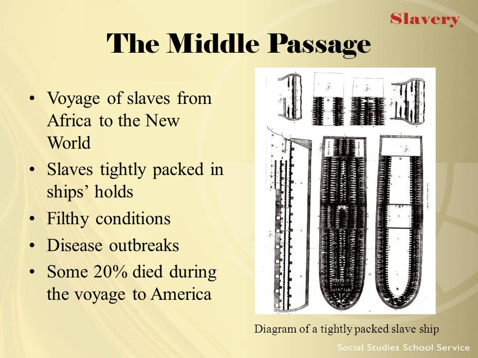 Diagram of a tightly packed slave ship