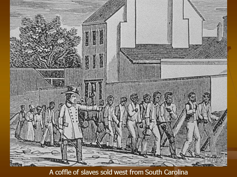 A coffle of slaves sold west from South Carolina