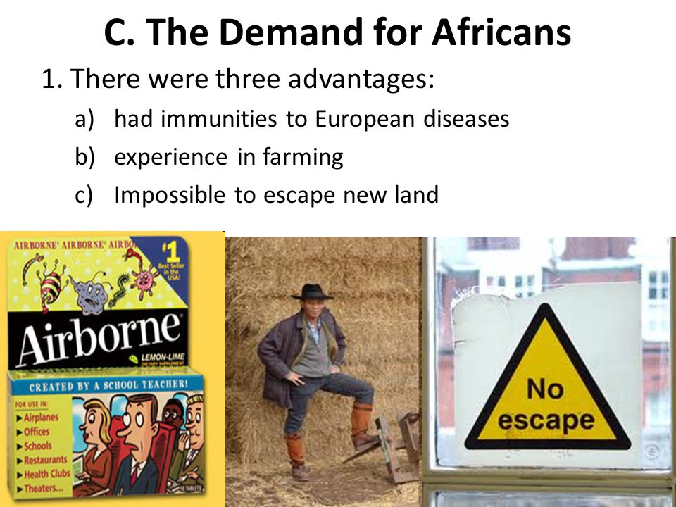 C. The Demand for Africans