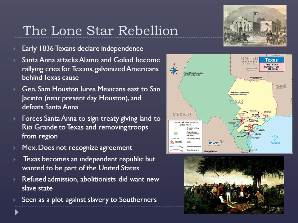 The Lone Star Rebellion