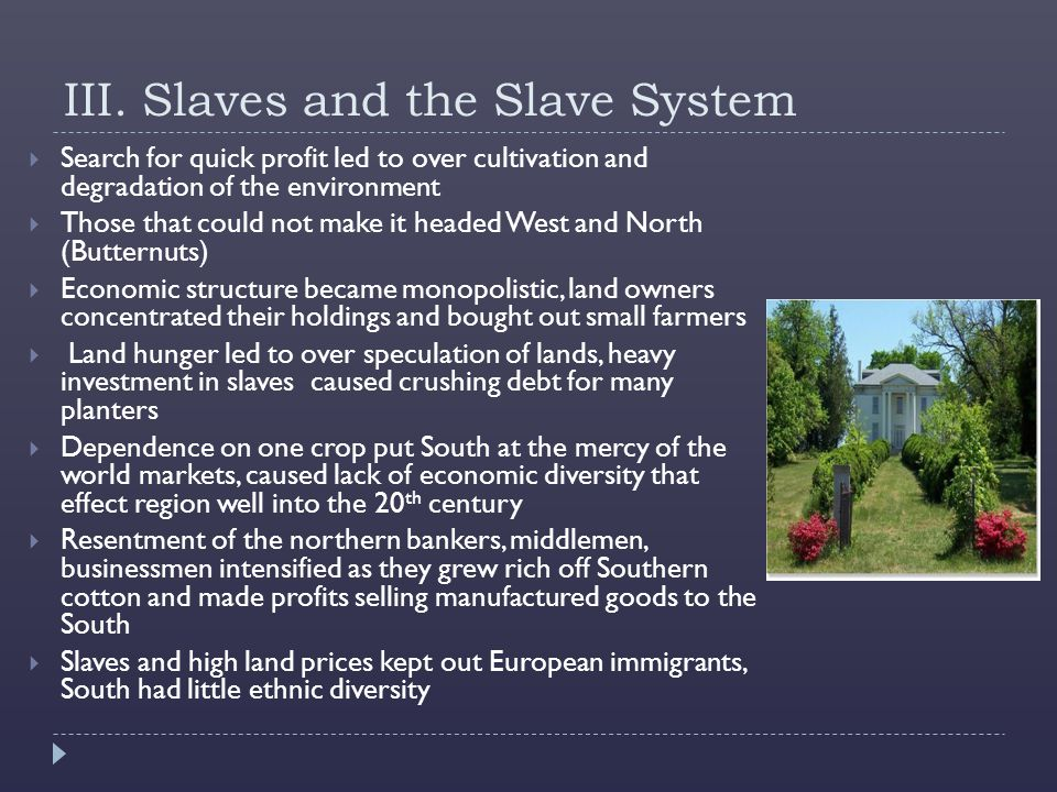 III. Slaves and the Slave System