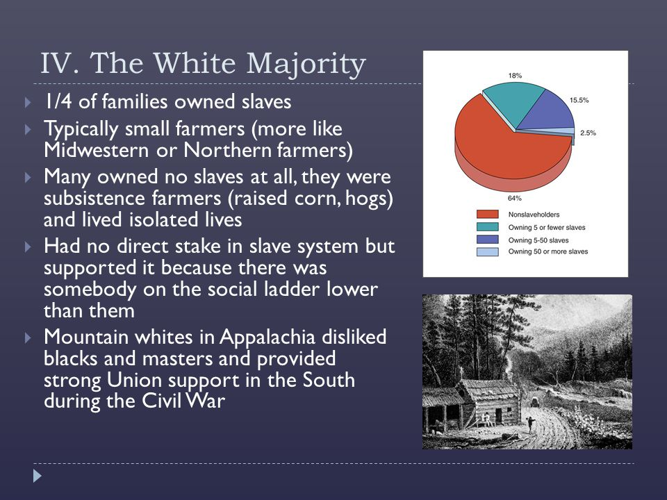 IV. The White Majority 1/4 of families owned slaves