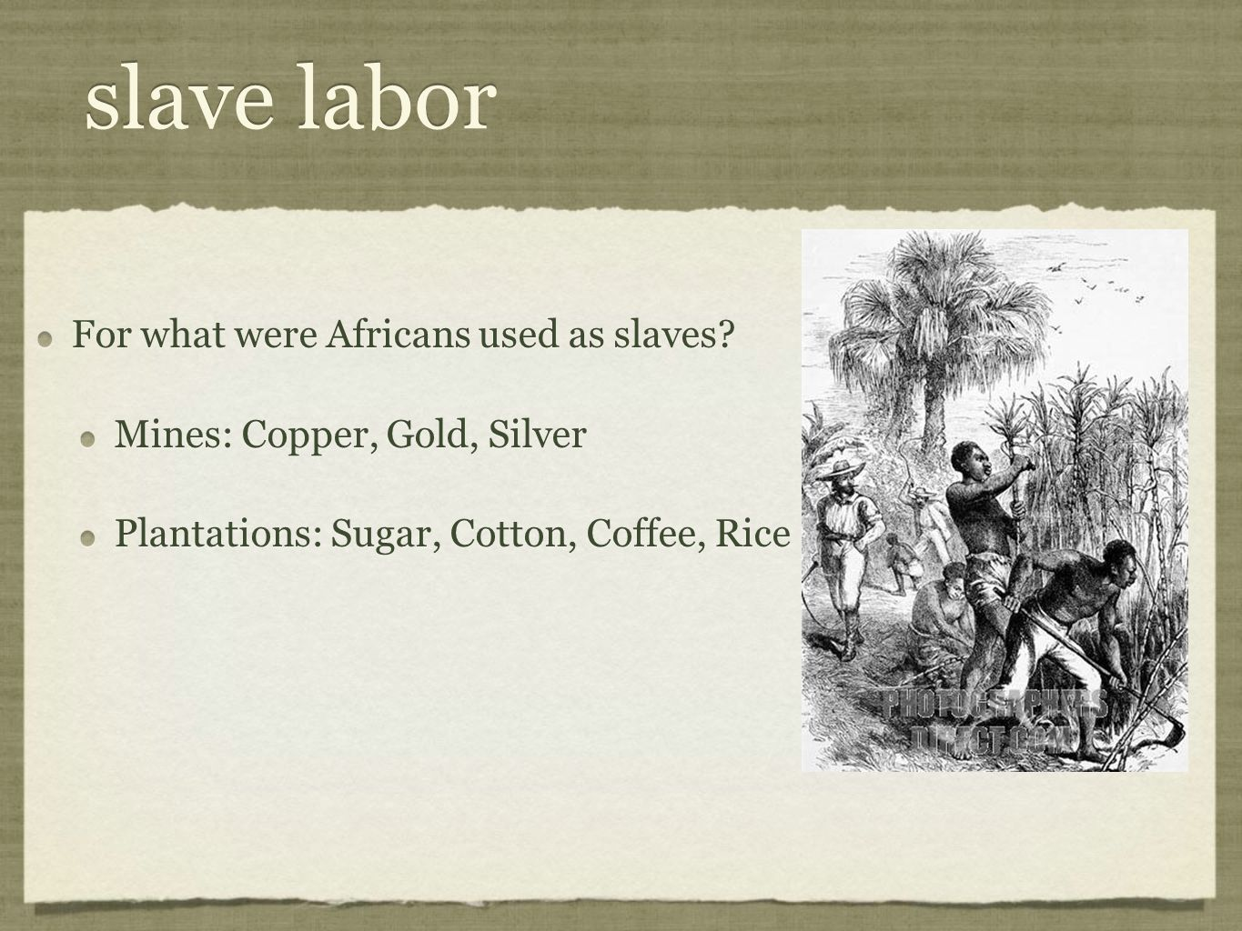 slave labor For what were Africans used as slaves